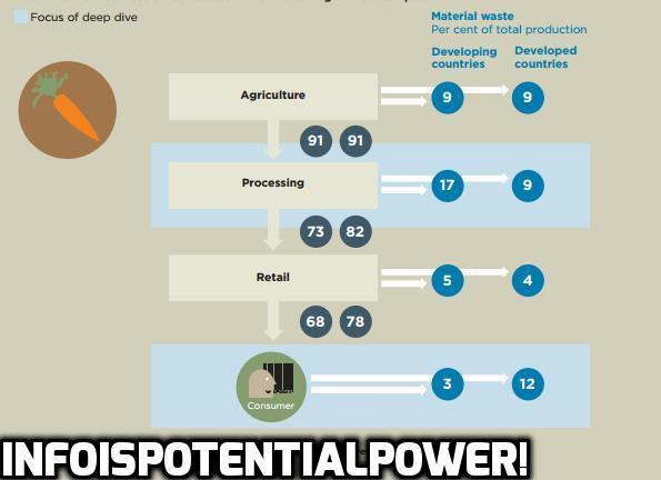 FAO food waste STATS
